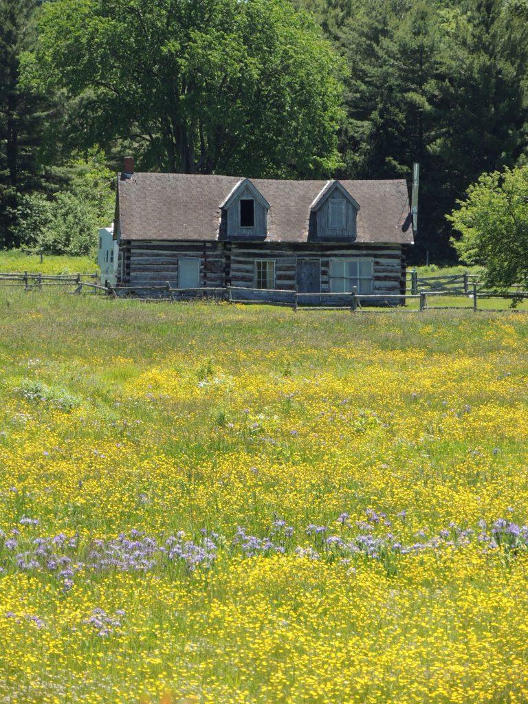 Bruce Co. cottage