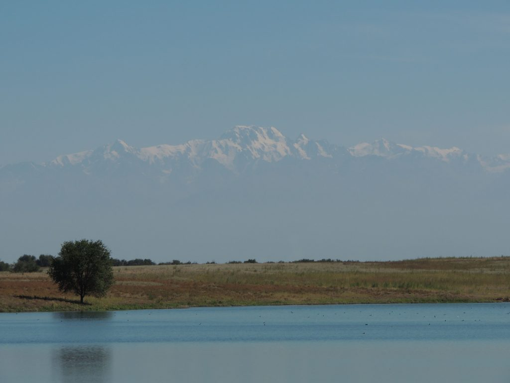 Steppe, lake and Tien Shan